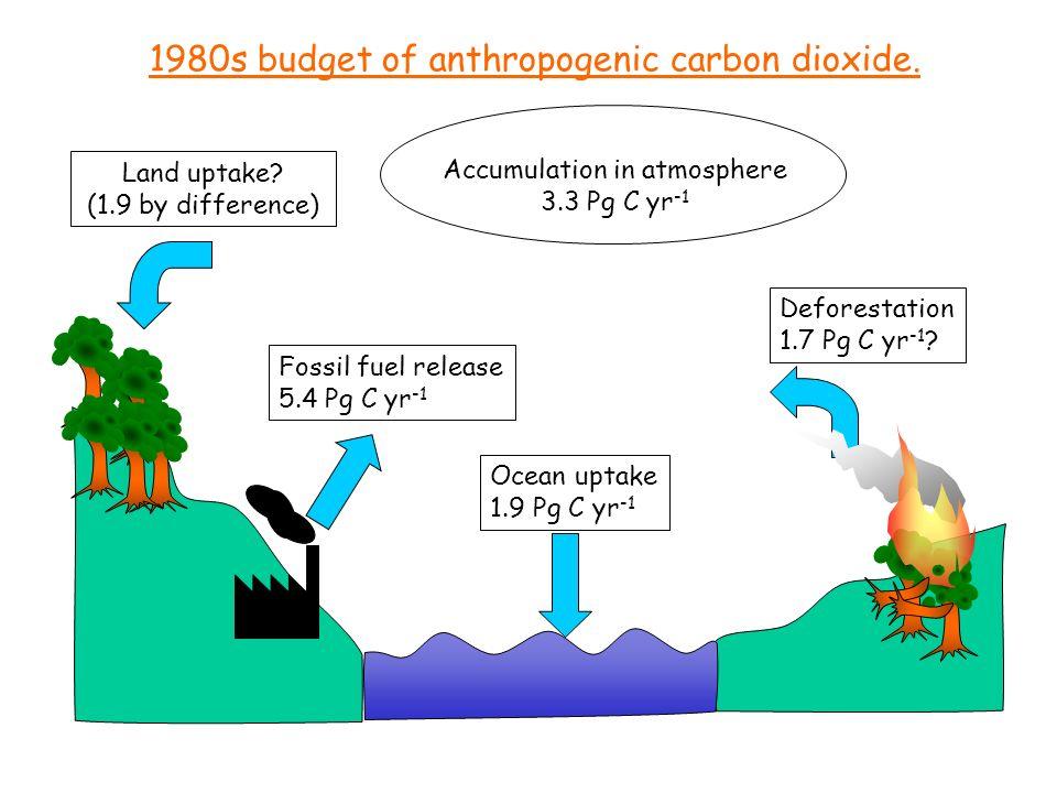 Ocean uptake 1.9 Pg C yr -1 Fossil fuel release 5.4 Pg C yr -1 Accumulation in atmosphere 3.3 Pg C yr -1 Land uptake? (1.9 by difference) Deforestatio