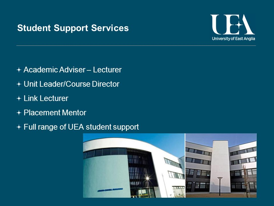 Student Support Services Academic Adviser – Lecturer Unit Leader/Course Director Link Lecturer Placement Mentor Full range of UEA student support