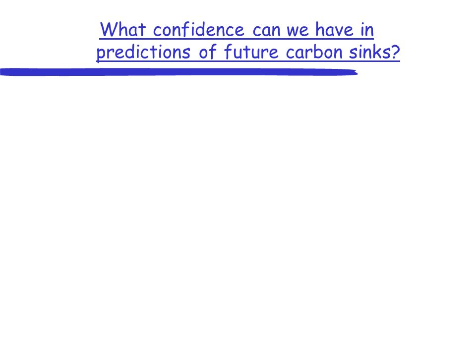 What confidence can we have in predictions of future carbon sinks?