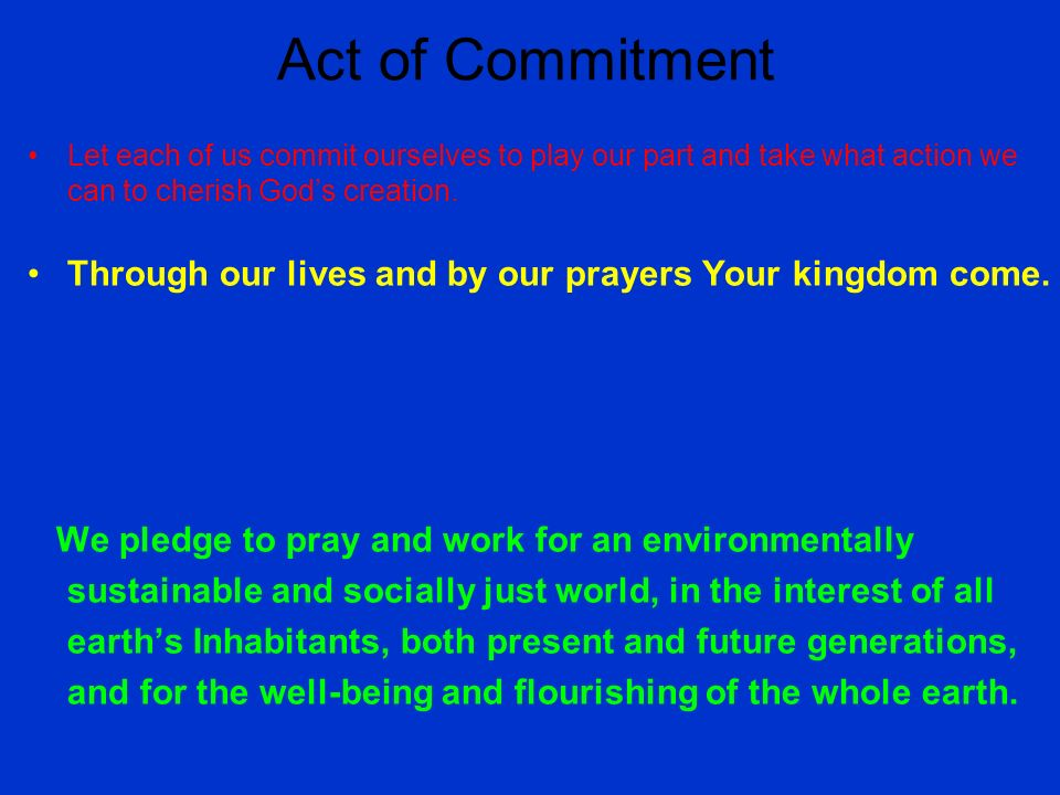 Act of Commitment Let each of us commit ourselves to play our part and take what action we can to cherish Gods creation.