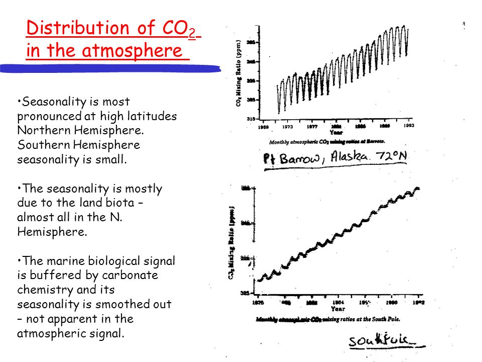 Distribution of CO 2 in the atmosphere Seasonality is most pronounced at high latitudes Northern Hemisphere.
