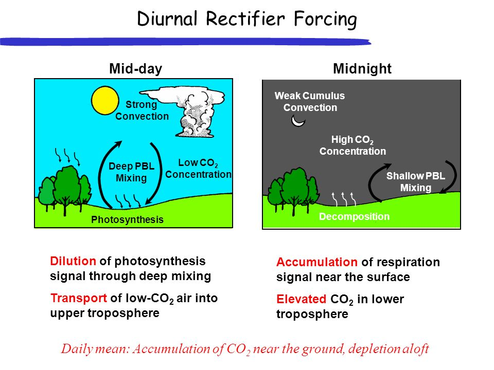 Diurnal Rectifier Forcing Daily mean: Accumulation of CO 2 near the ground, depletion aloft Dilution of photosynthesis signal through deep mixing Transport of low-CO 2 air into upper troposphere Mid-day Deep PBL Mixing Low CO 2 Concentration Photosynthesis Strong Convection Accumulation of respiration signal near the surface Elevated CO 2 in lower troposphere Midnight Shallow PBL Mixing High CO 2 Concentration Decomposition Weak Cumulus Convection
