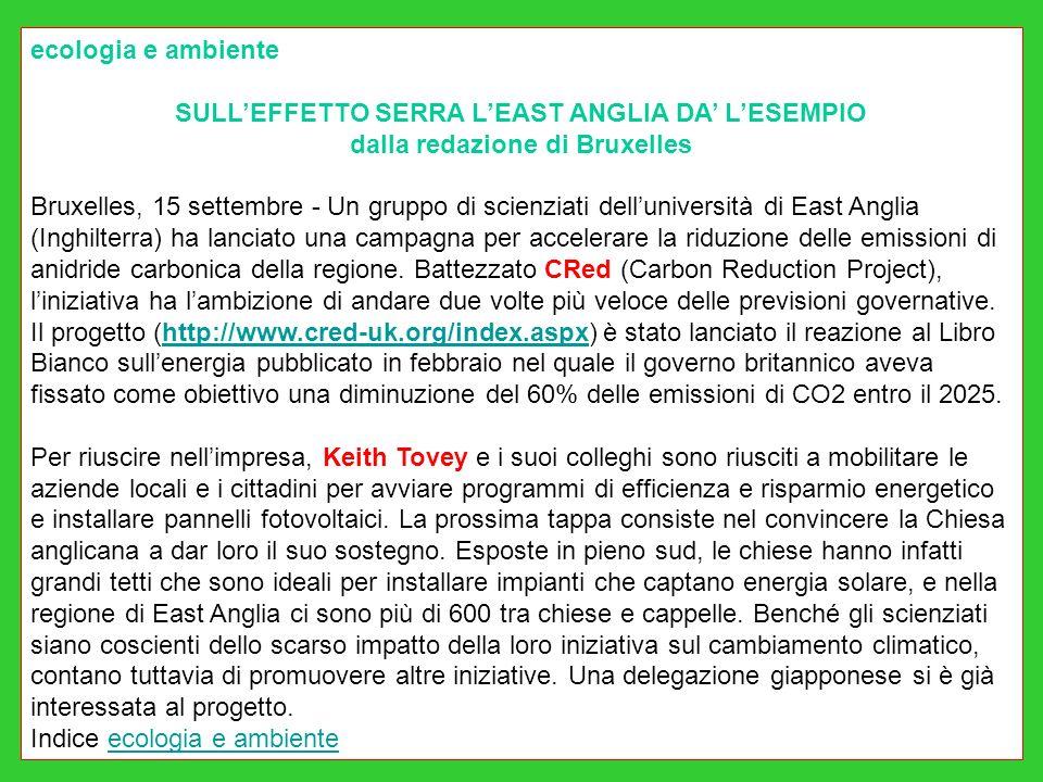 ecologia e ambiente SULLEFFETTO SERRA LEAST ANGLIA DA LESEMPIO dalla redazione di Bruxelles Bruxelles, 15 settembre - Un gruppo di scienziati delluniv