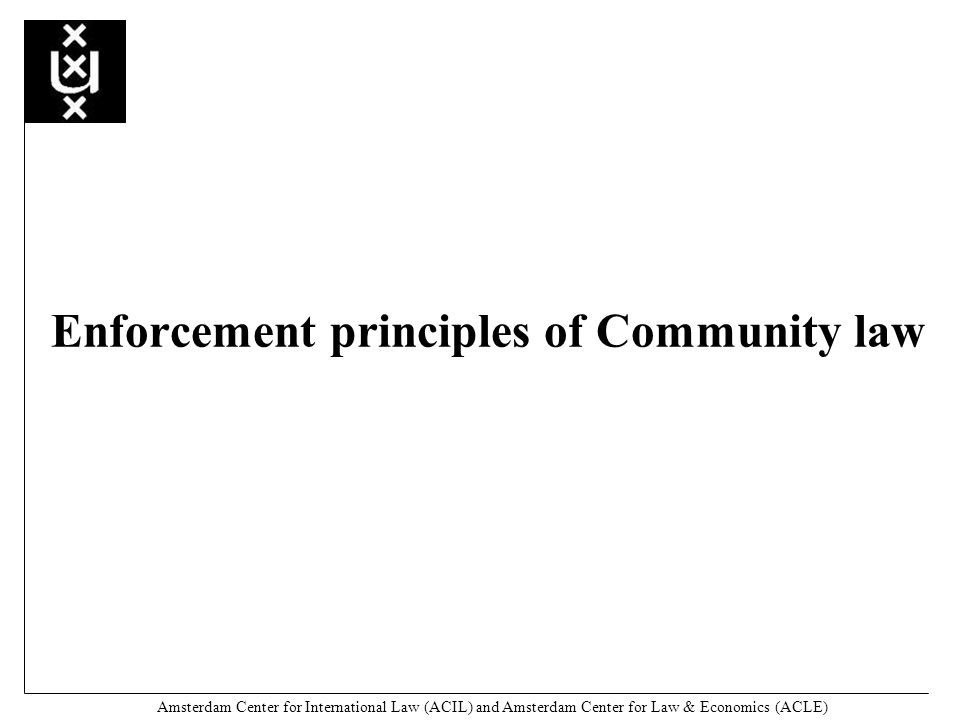 Amsterdam Center for International Law (ACIL) and Amsterdam Center for Law & Economics (ACLE) Enforcement principles of Community law