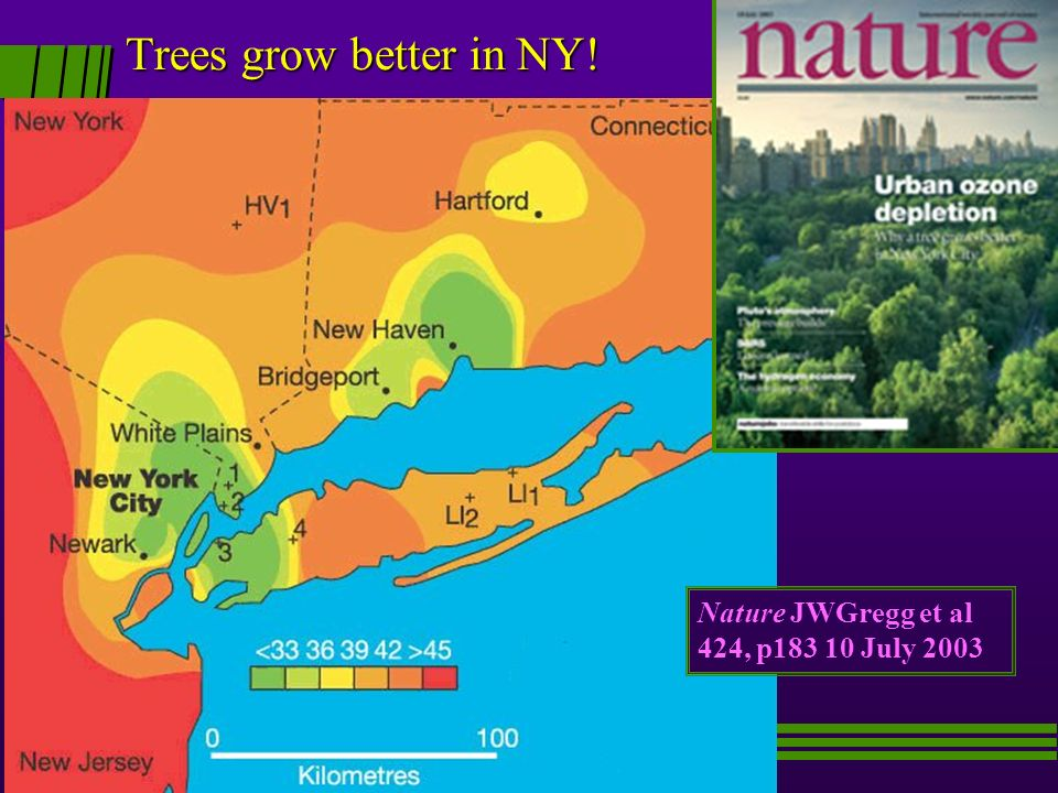 Trees grow better in NY! Nature JWGregg et al 424, p183 10 July 2003