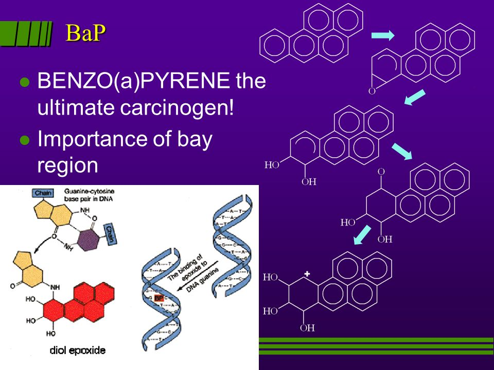 BaP BaP l BENZO(a)PYRENE the ultimate carcinogen! l Importance of bay region
