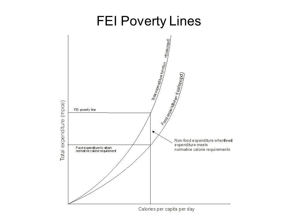 FEI Poverty Lines