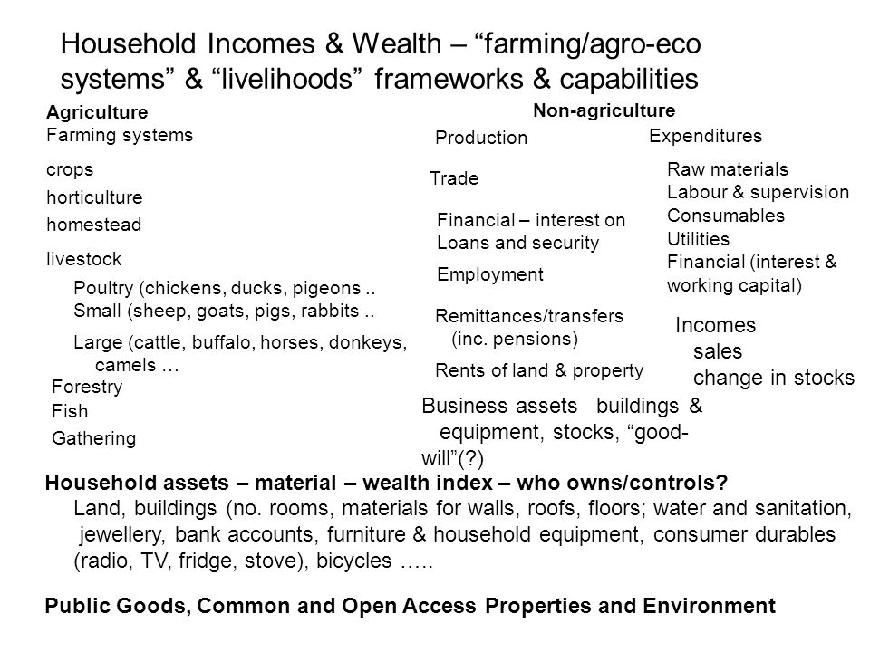 Household Incomes & Wealth – farming/agro-eco systems & livelihoods frameworks & capabilities Agriculture Non-agriculture Farming systems crops horticulture homestead livestock Poultry (chickens, ducks, pigeons..