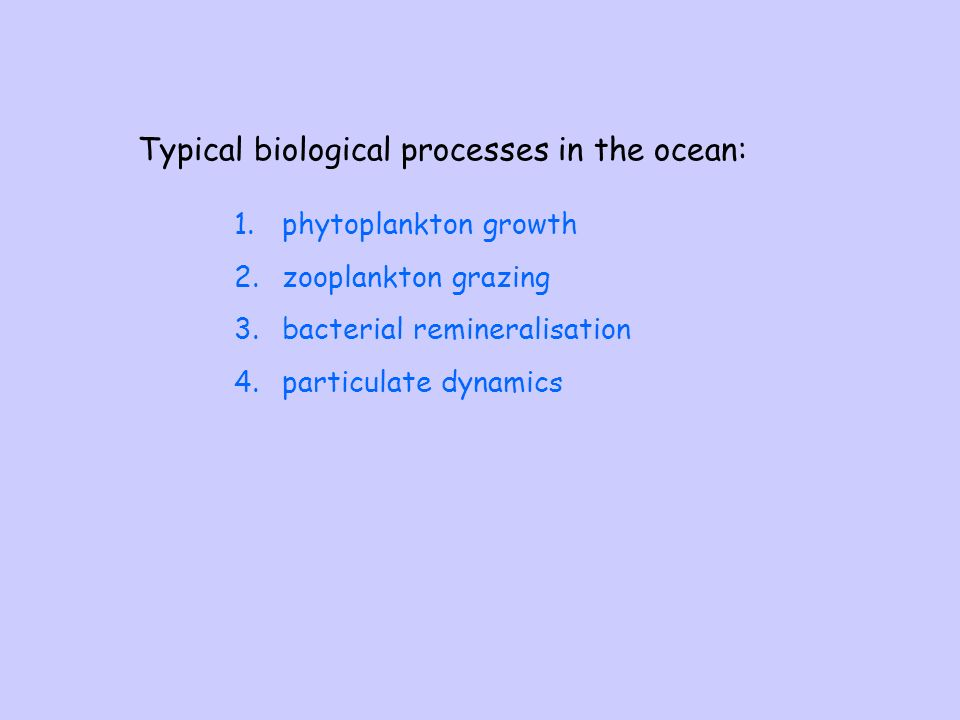 Typical biological processes in the ocean: 1.phytoplankton growth 2.zooplankton grazing 3.bacterial remineralisation 4.particulate dynamics