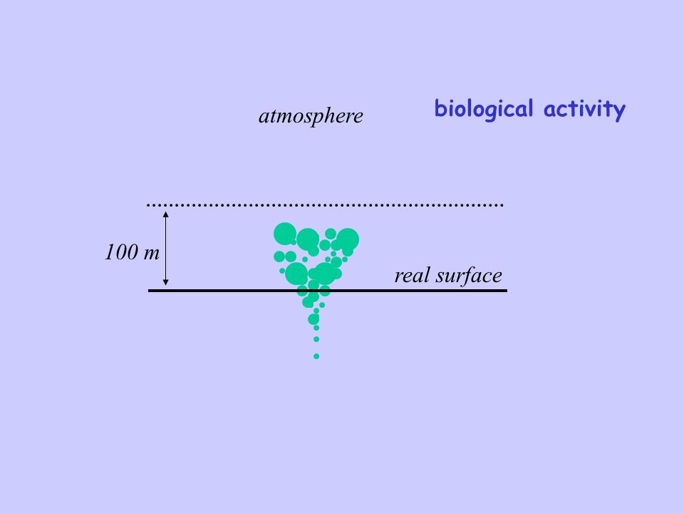 real surface atmosphere 100 m biological activity