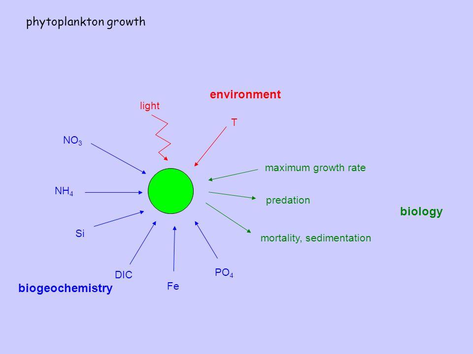 NO 3 NH 4 Si DIC Fe PO 4 light T predation mortality, sedimentation environment biogeochemistry biology maximum growth rate phytoplankton growth