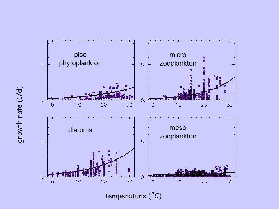 growth rate (1/d) Buitenhuis et al., 2006 temperature (˚C) pico phytoplankton diatoms micro zooplankton meso zooplankton