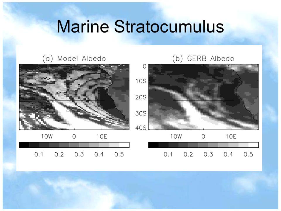 Marine Stratocumulus