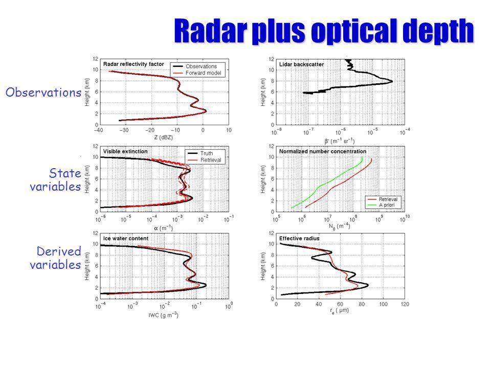 Radar plus optical depth Observations State variables Derived variables