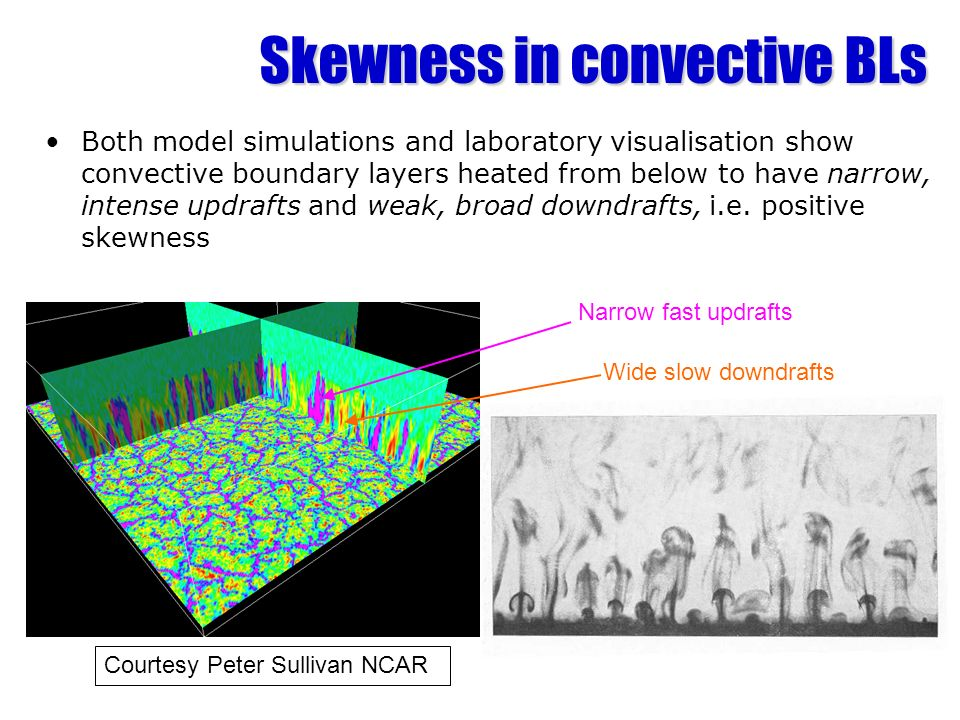 Skewness in convective BLs Both model simulations and laboratory visualisation show convective boundary layers heated from below to have narrow, inten