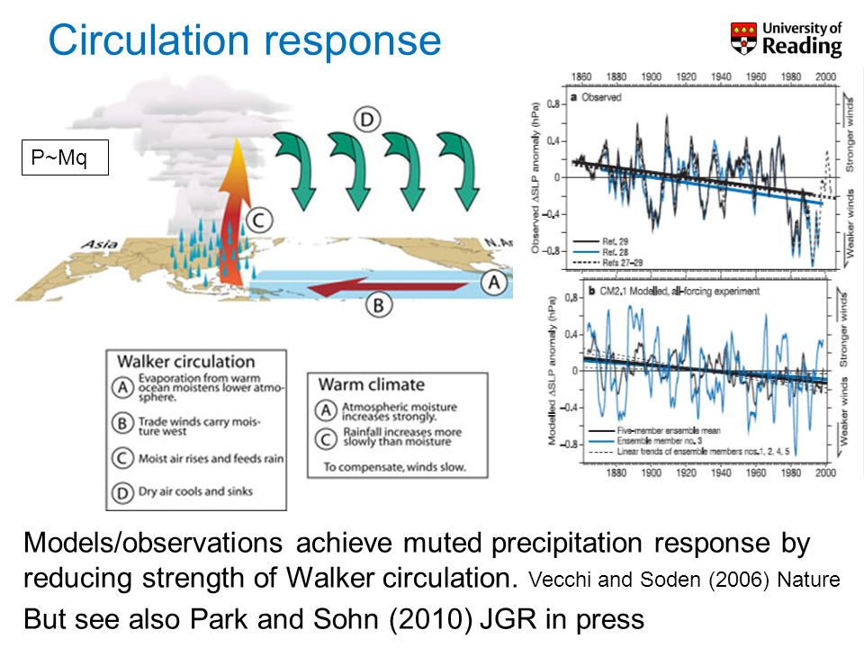 Models/observations achieve muted precipitation response by reducing strength of Walker circulation. Vecchi and Soden (2006) Nature But see also Park
