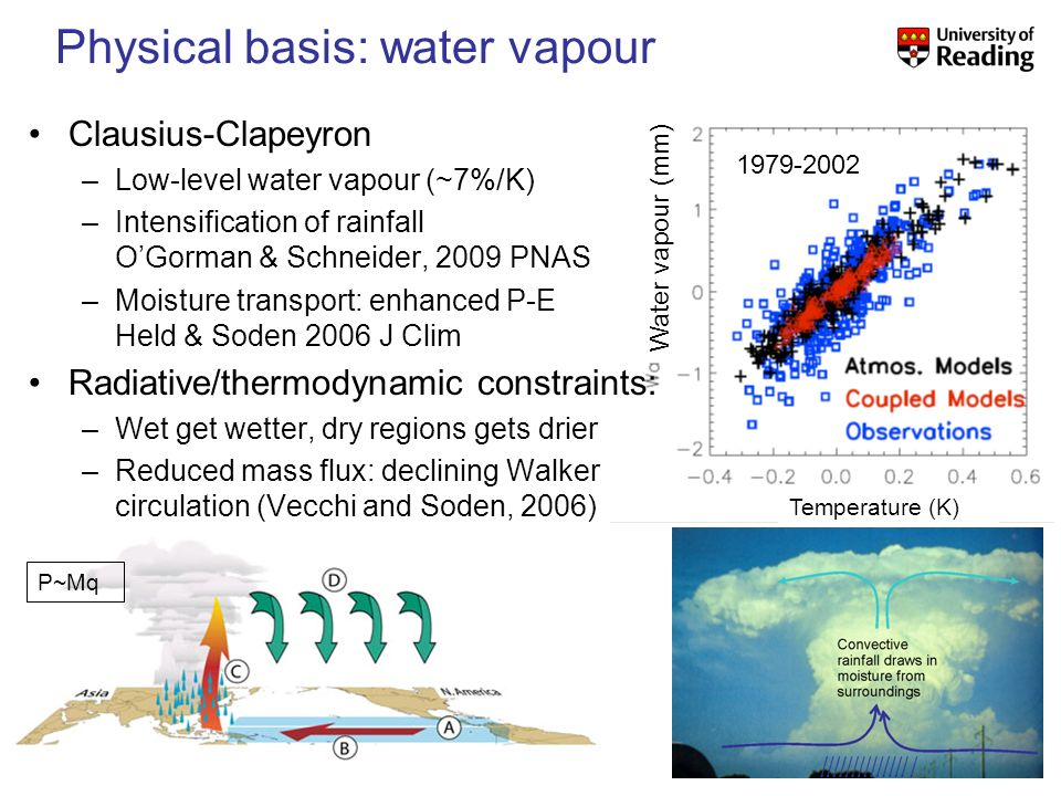 Physical basis: water vapour 1979-2002 Clausius-Clapeyron –Low-level water vapour (~7%/K) –Intensification of rainfall OGorman & Schneider, 2009 PNAS –Moisture transport: enhanced P-E Held & Soden 2006 J Clim Radiative/thermodynamic constraints: –Wet get wetter, dry regions gets drier –Reduced mass flux: declining Walker circulation (Vecchi and Soden, 2006) P~Mq Water vapour (mm) Temperature (K)