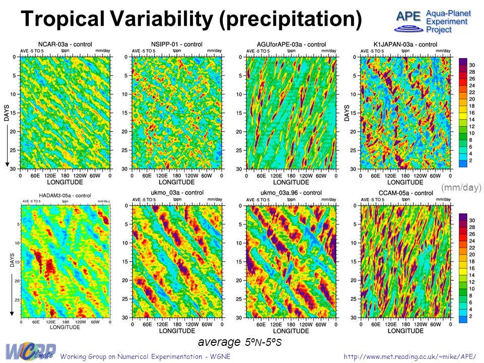 Tropical Variability (precipitation) average 5º N -5º S http://www.met.reading.ac.uk/~mike/APE/Working Group on Numerical Experimentation - WGNE (mm/day)