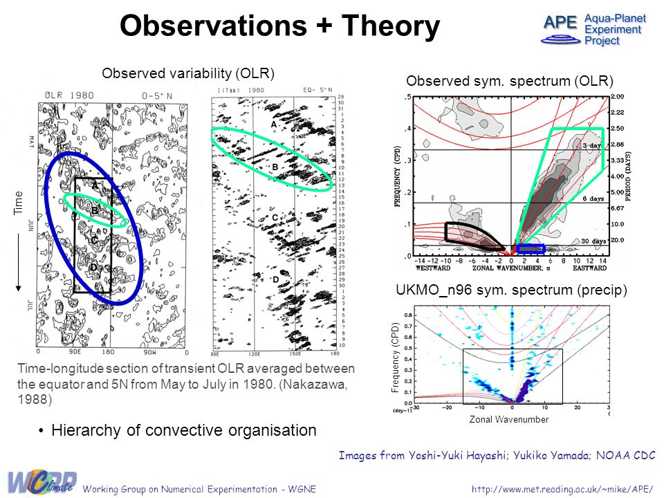 http://www.met.reading.ac.uk/~mike/APE/Working Group on Numerical Experimentation - WGNE Observations + Theory Observed variability (OLR) Hierarchy of convective organisation Time Time-longitude section of transient OLR averaged between the equator and 5N from May to July in 1980.