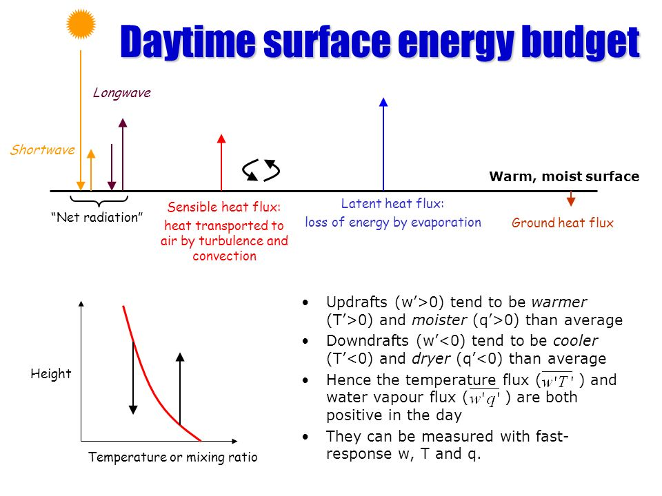 Daytime surface energy budget Updrafts (w>0) tend to be warmer (T>0) and moister (q>0) than average Downdrafts (w<0) tend to be cooler (T<0) and dryer