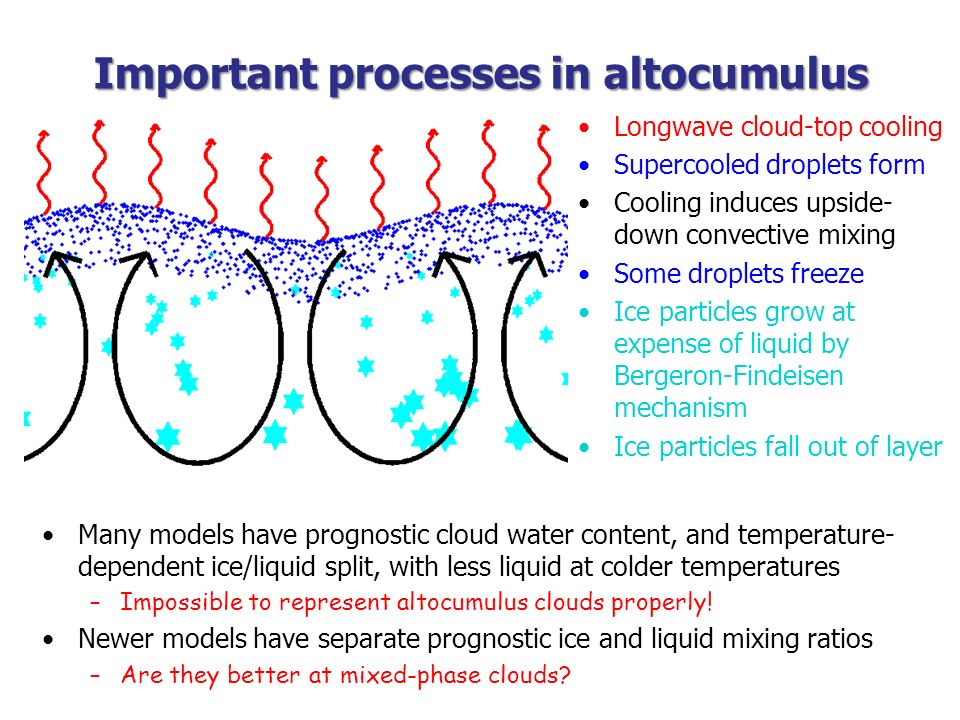 Important processes in altocumulus Longwave cloud-top cooling Supercooled droplets form Cooling induces upside- down convective mixing Some droplets f