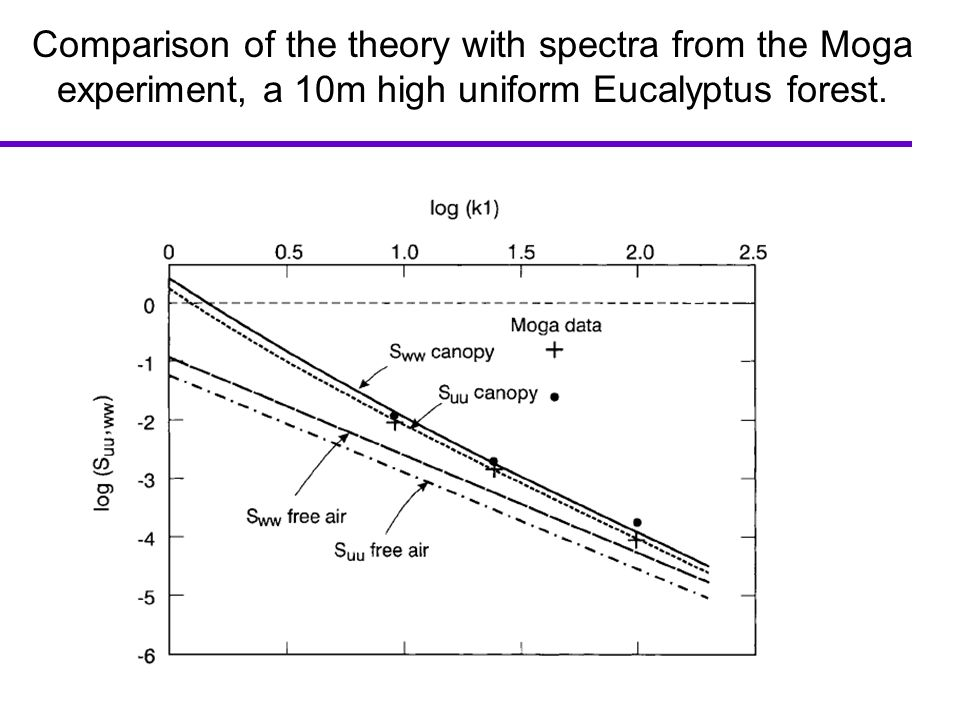 Comparison of the theory with spectra from the Moga experiment, a 10m high uniform Eucalyptus forest.