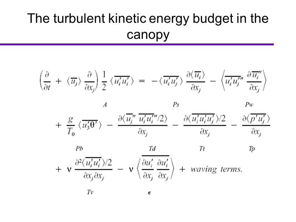 The turbulent kinetic energy budget in the canopy