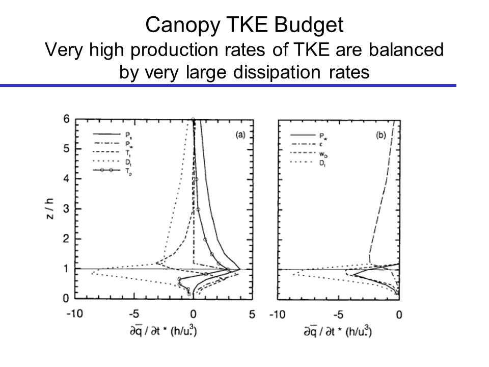 Canopy TKE Budget Very high production rates of TKE are balanced by very large dissipation rates
