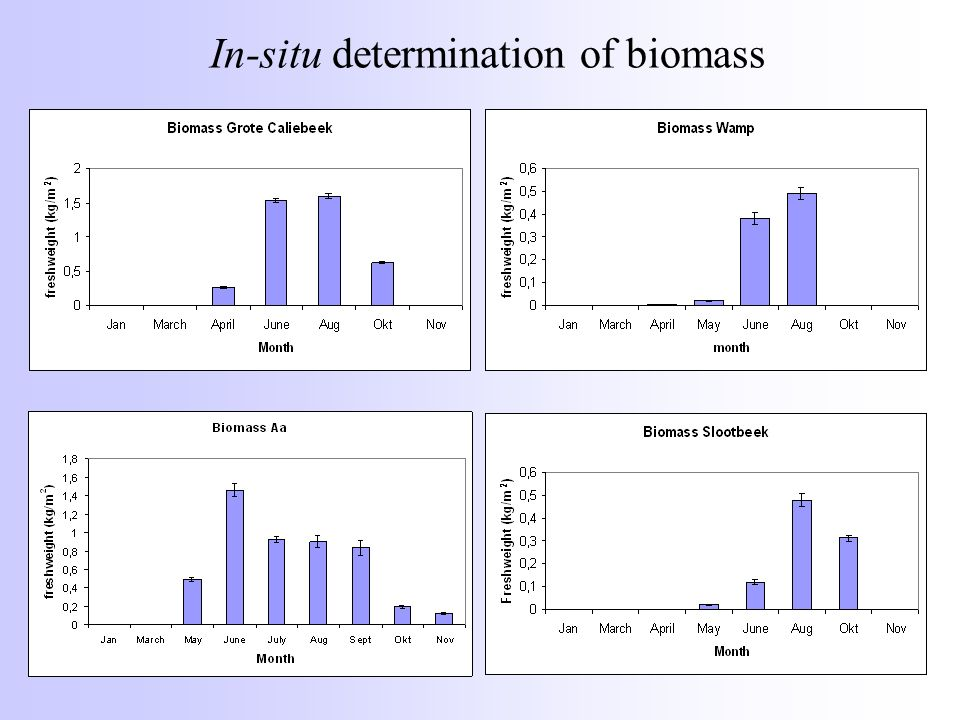 In-situ determination of biomass