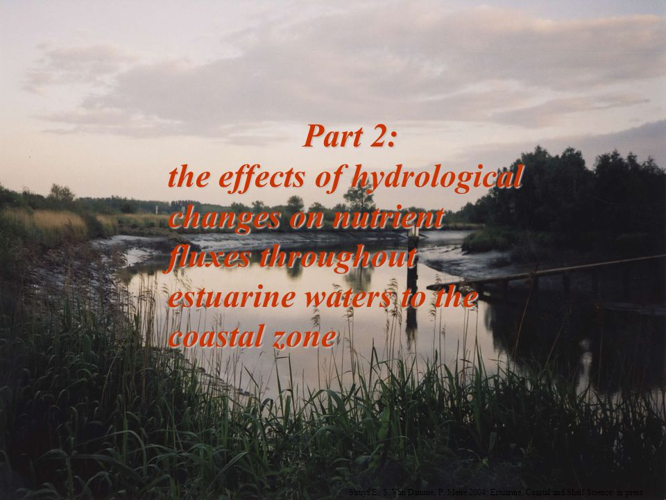 Part 2: the effects of hydrological changes on nutrient fluxes throughout estuarine waters to the coastal zone Struyf E., S.