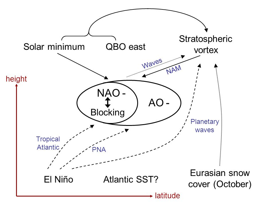 AO - NAO - Blocking El Niño Eurasian snow cover (October) Solar minimumQBO east Stratospheric vortex Tropical Atlantic Planetary waves PNA Waves NAM l