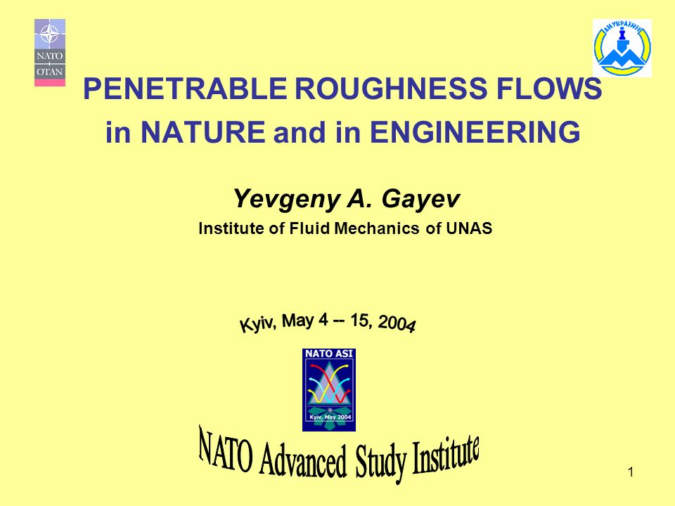 1 PENETRABLE ROUGHNESS FLOWS in NATURE and in ENGINEERING Yevgeny A. Gayev Institute of Fluid Mechanics of UNAS
