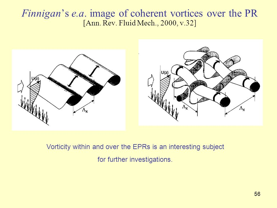 56 Finnigans e.a. image of coherent vortices over the PR [Ann. Rev. Fluid Mech., 2000, v.32] Vorticity within and over the EPRs is an interesting subj