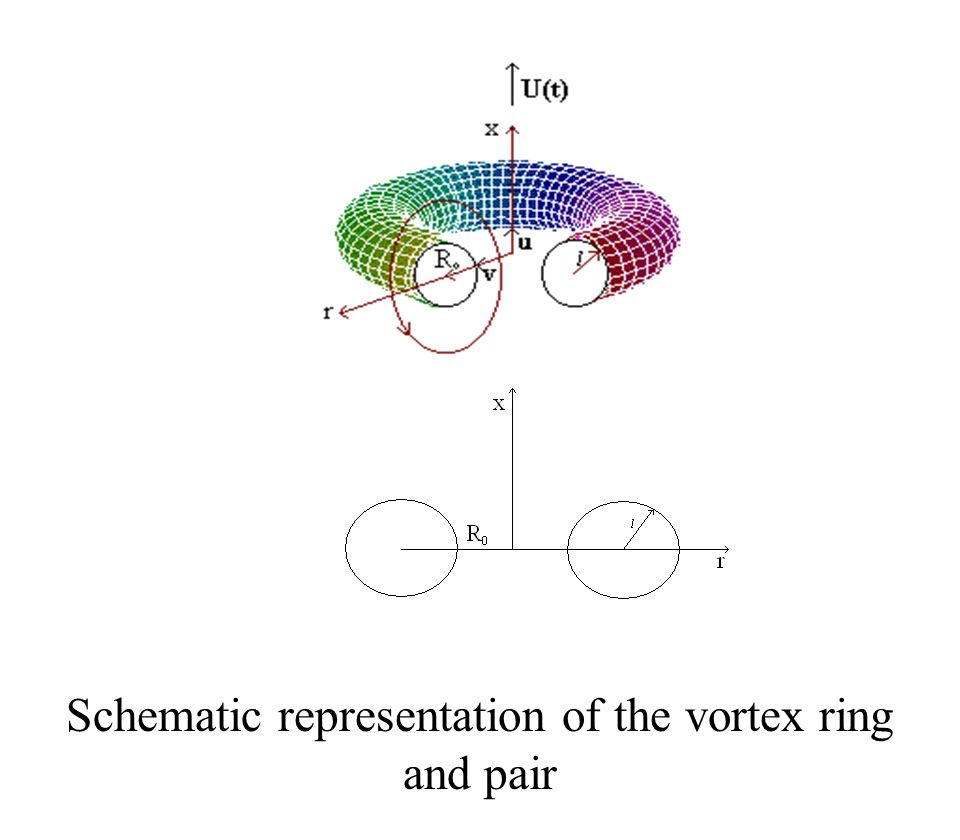 Schematic representation of the vortex ring and pair