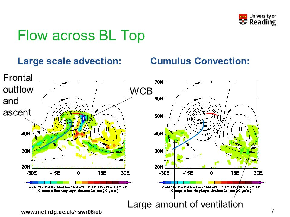 www.met.rdg.ac.uk/~swr06iab Flow across BL Top Large scale advection:Cumulus Convection: 7 WCB Frontal outflow and ascent Large amount of ventilation