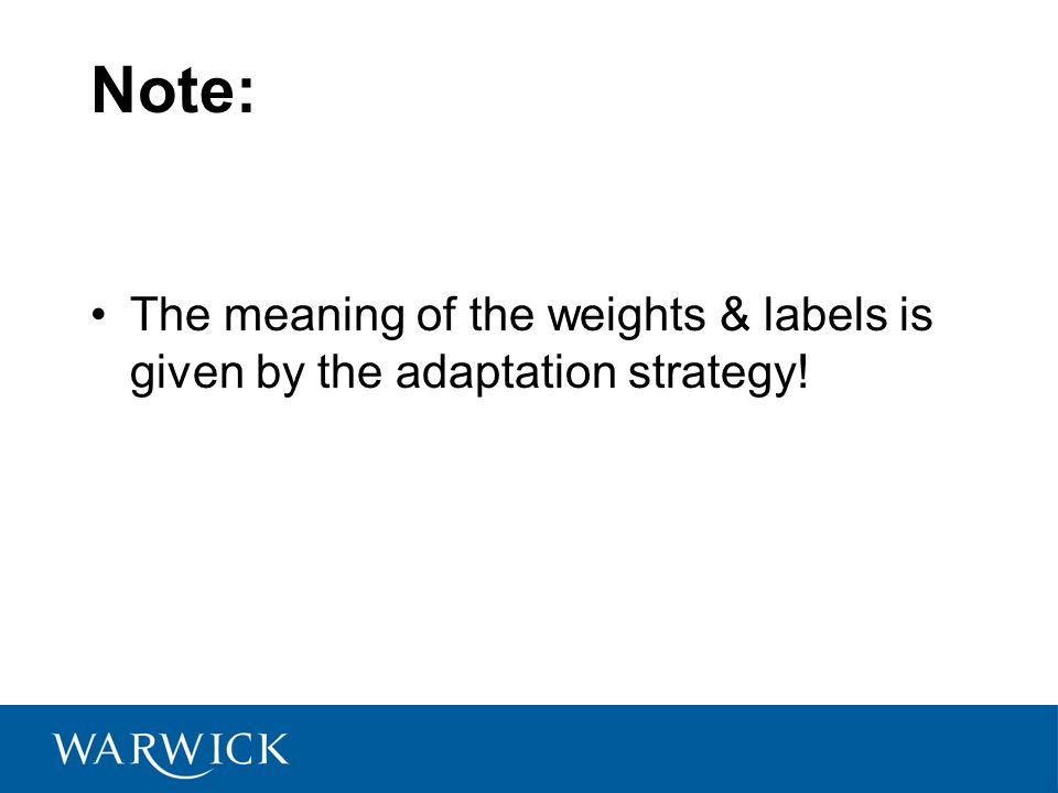 Note: The meaning of the weights & labels is given by the adaptation strategy!
