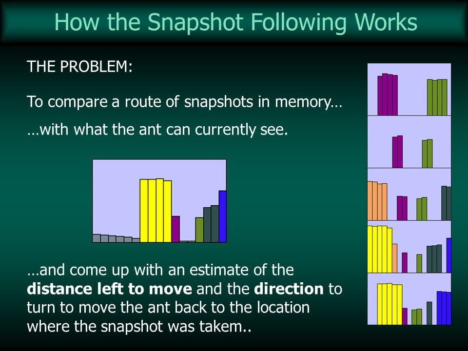 How the Snapshot Following Works THE PROBLEM: To compare a route of snapshots in memory… …with what the ant can currently see. …and come up with an es