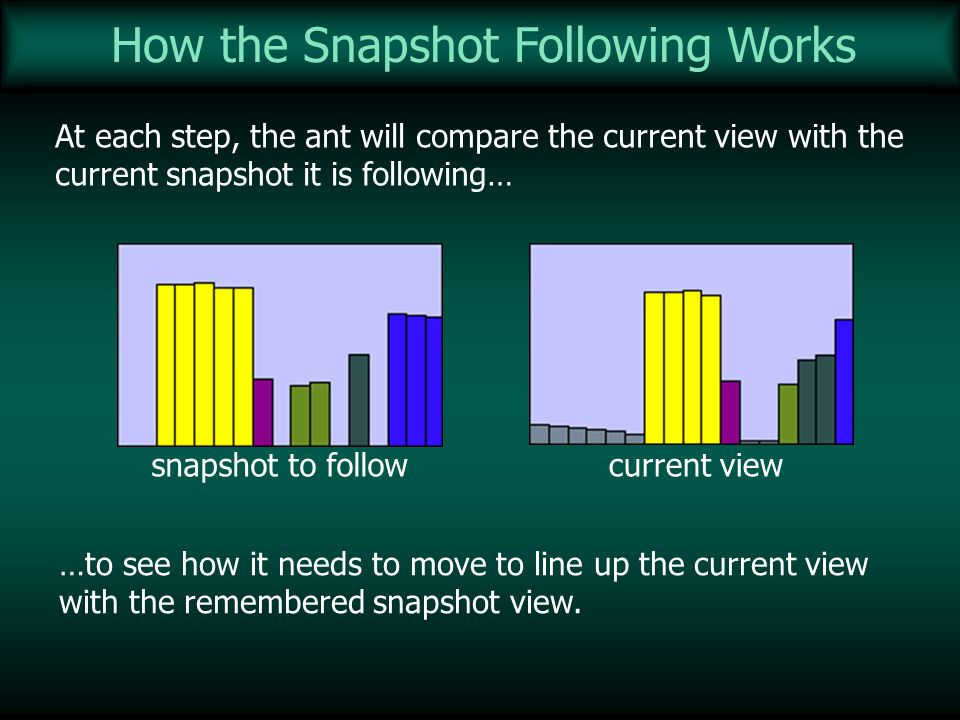 How the Snapshot Following Works At each step, the ant will compare the current view with the current snapshot it is following… current viewsnapshot t