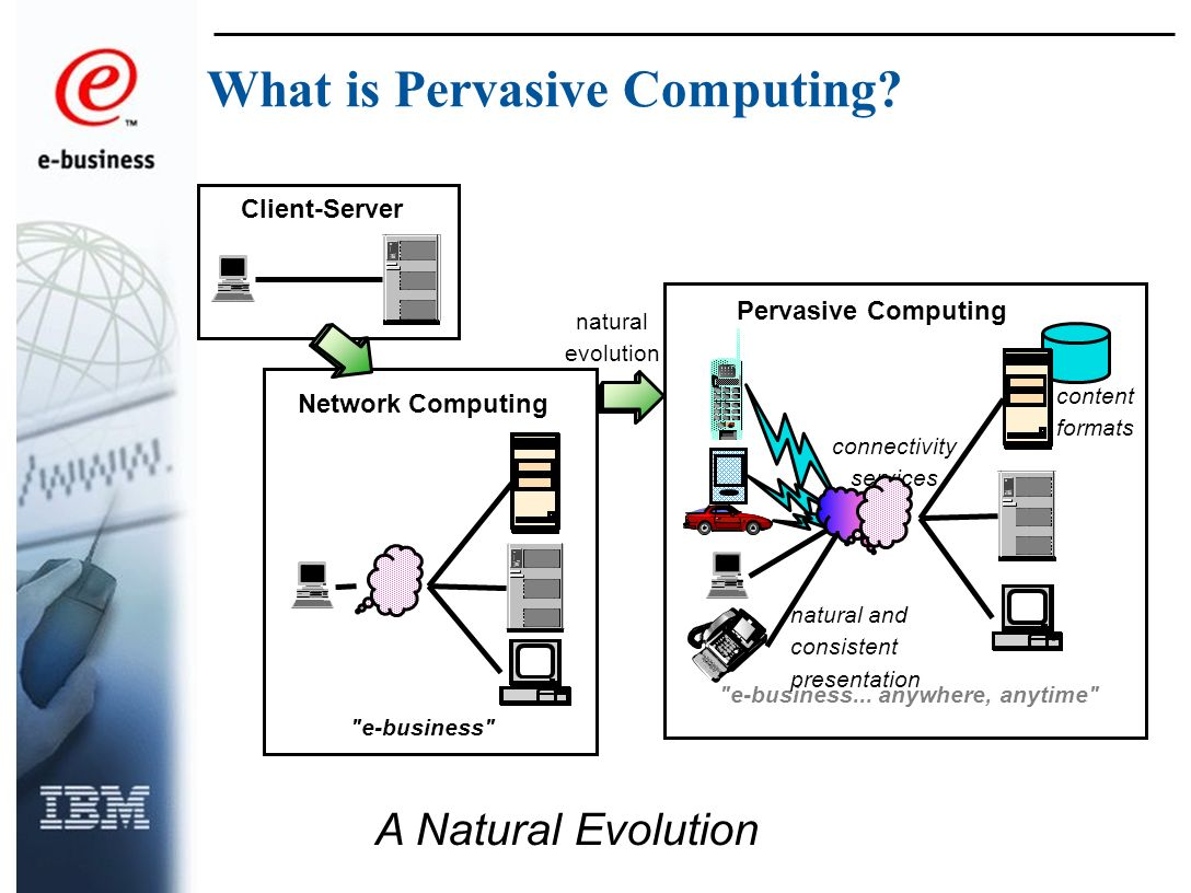 Client-Server Network Computing Pervasive Computing connectivity services e-business...