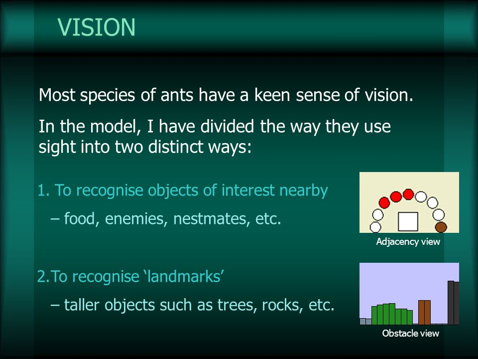 VISION Most species of ants have a keen sense of vision. In the model, I have divided the way they use sight into two distinct ways: 1.To recognise ob