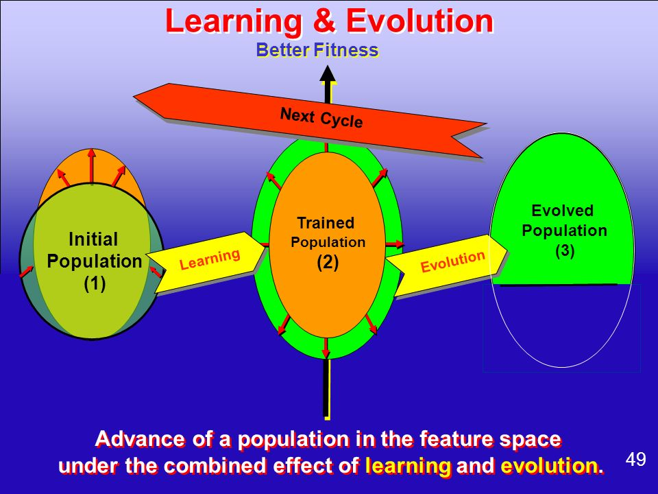 49 Better Fitness Evolution Evolved Population (3) Next Cycle Initial Population (1) Learning Trained Population (2) Advance of a population in the fe