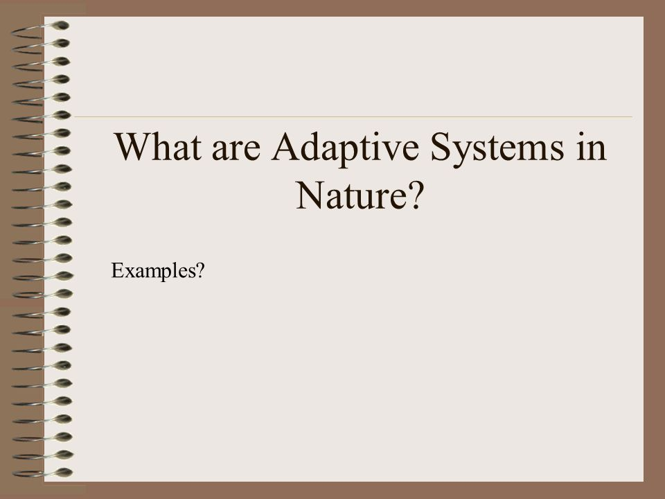 What are Adaptive Systems in Nature Examples