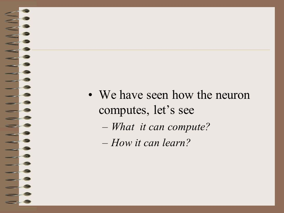 What does the neuron compute?
