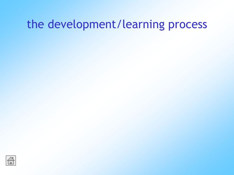 the development/learning process