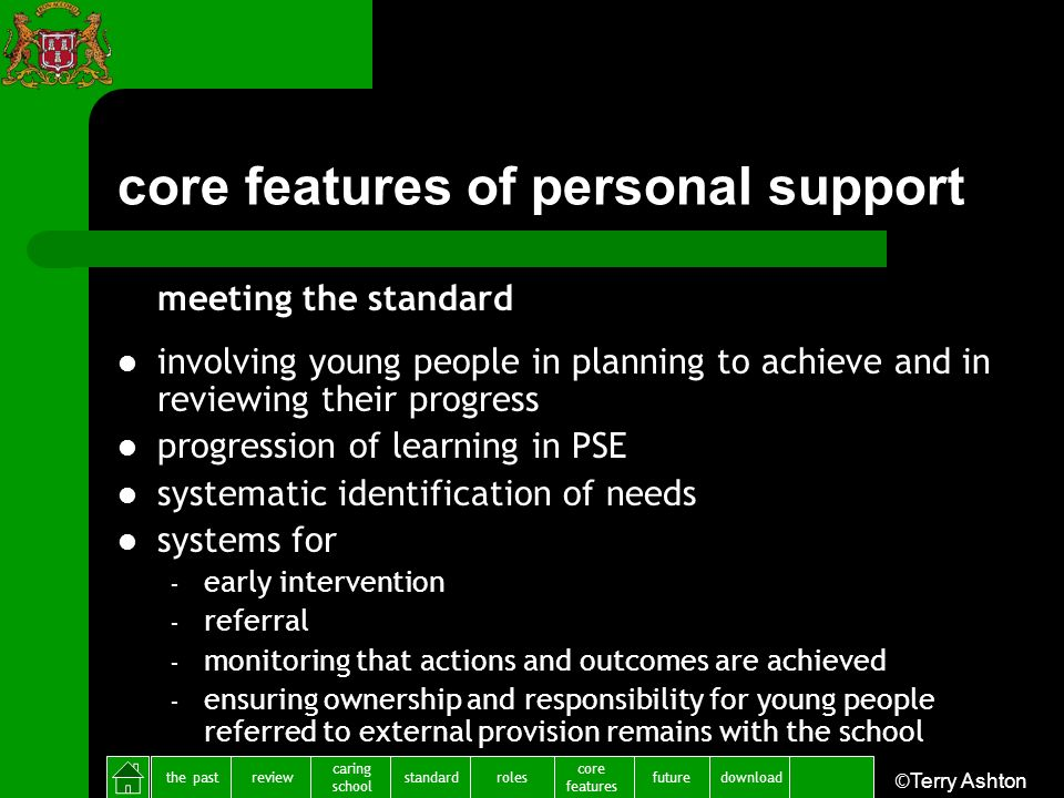 the pastreview caring school standardfuture core features rolesdownload ©Terry Ashton core features of personal support meeting the standard involving