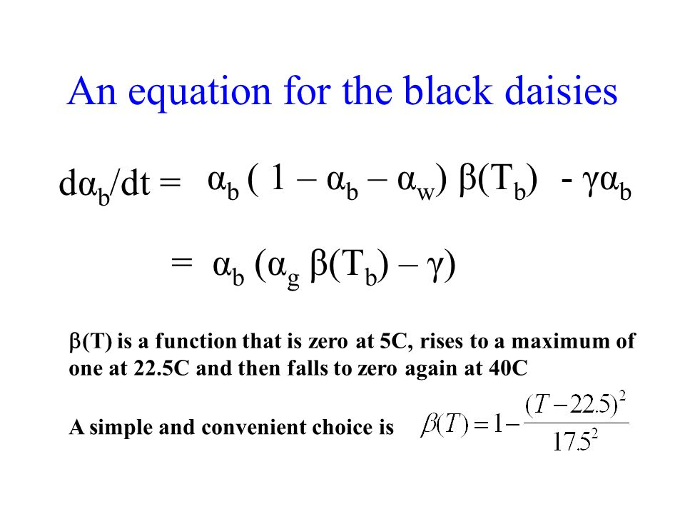 An equation for the black daisies dα b /dt = αbαb ( 1 – α b – α w )β(T b )- γα b = α b (α g β(T b ) – γ) (T) is a function that is zero at 5C, rises to a maximum of one at 22.5C and then falls to zero again at 40C A simple and convenient choice is