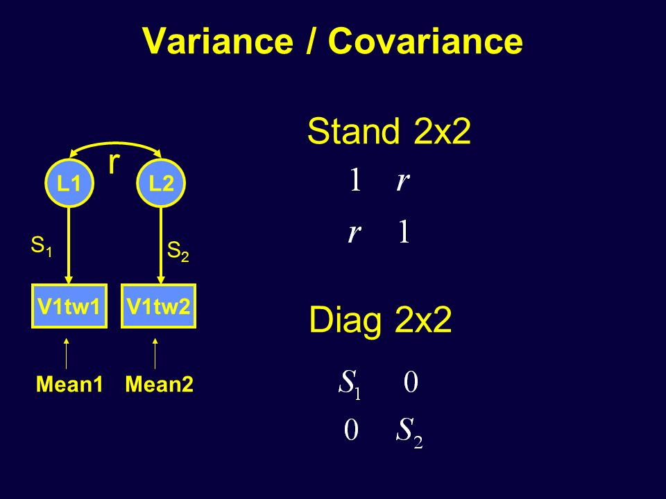Variance / Covariance V1tw1V1tw2 L1L2 Mean1Mean2 S1S1 S2S2 Stand 2x2 r Diag 2x2