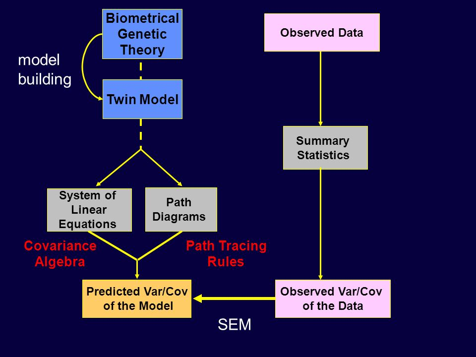 Biometrical Genetic Theory Predicted Var/Cov of the Model Path Tracing Rules System of Linear Equations Path Diagrams Observed Var/Cov of the Data Cov