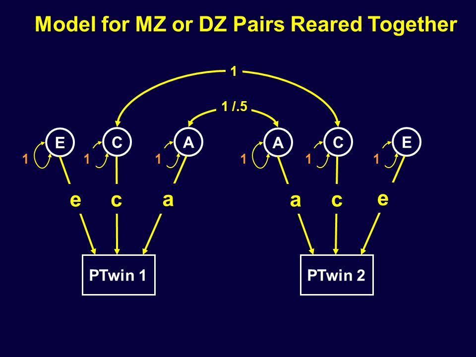 PTwin 1 E CA 1 1 1 PTwin 2 A CE 1 1 1 Model for MZ or DZ Pairs Reared Together 1 1 /.5 e a ca e c