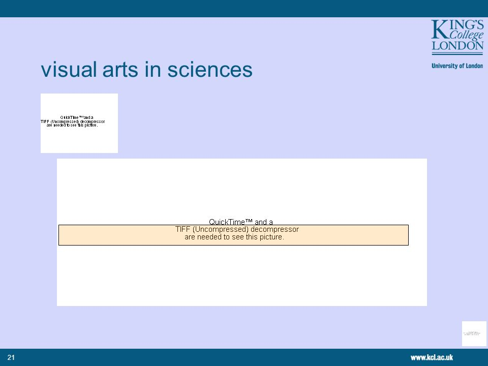 21 visual arts in sciences